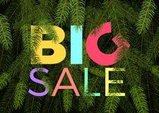 Μεγάλο έμβλημα χειμερινής πώλησης διανυσματικοί κλάδοι δέντρων έλατου ετικετών πράσινοι και μεγάλο κείμενο πώλησης Στοκ Εικόνες