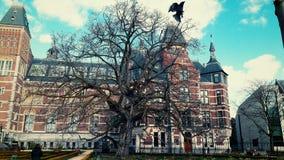 Μεγάλο δέντρο και ένας κόρακας Στοκ φωτογραφίες με δικαίωμα ελεύθερης χρήσης