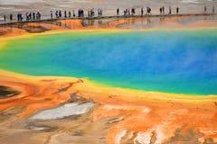 μεγάλο εθνικό yellowstone άνοιξη πάρ&kap Στοκ εικόνες με δικαίωμα ελεύθερης χρήσης