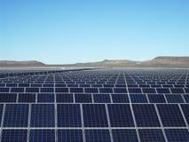 Μεγάλο ηλιακό αγρόκτημα Στοκ Εικόνες
