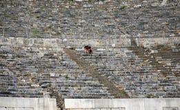 Μεγάλο θέατρο στην αρχαία πόλη Ephesus Στοκ εικόνες με δικαίωμα ελεύθερης χρήσης