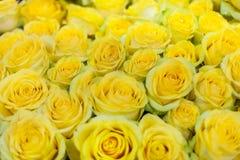 μεγάλο διάνυσμα τριαντάφυλλων ανθοδεσμών Στοκ φωτογραφία με δικαίωμα ελεύθερης χρήσης