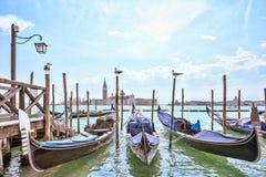 Μεγάλο κανάλι στη Βενετία, πλατεία SAN Marco Seagulls ελευθερία νερού Γαλήνια θέα Φυσική εικονική παράσταση πόλης με τις γόνδολες Στοκ εικόνες με δικαίωμα ελεύθερης χρήσης