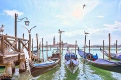 Μεγάλο κανάλι στη Βενετία, πλατεία SAN Marco Seagulls ελευθερία νερού Γαλήνια θέα Φυσική εικονική παράσταση πόλης με τις γόνδολες Στοκ Εικόνες
