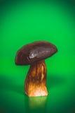Μεγάλο καφετί boletus μανιταριών και ο σφόνδυλος Στοκ Εικόνες