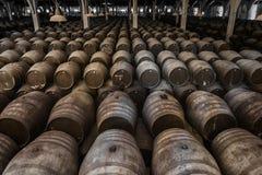 Μεγάλο κελάρι κρασιού στοκ εικόνες