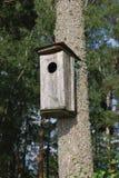 Μεγάλο κιβώτιο πουλιών Στοκ Φωτογραφίες