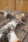 Μεγάλο μαχαίρι κυνηγιού που κολλιέται στο κούτσουρο Στοκ φωτογραφία με δικαίωμα ελεύθερης χρήσης