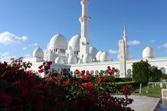 Μεγάλο μουσουλμανικό τέμενος στο Αμπού Νταμπί στοκ εικόνες