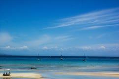 μεγάλο νησί Νέα Ζηλανδία εμ& Στοκ φωτογραφίες με δικαίωμα ελεύθερης χρήσης