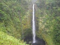 μεγάλο νησί της Χαβάης πτώσεων akaka Στοκ Φωτογραφία