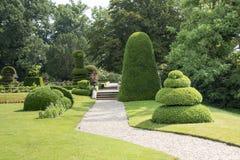 Μεγάλο πάρκο με τα δέντρα και τις εγκαταστάσεις buxus στοκ εικόνα
