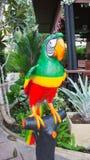 Μεγάλο παιχνίδι παπαγάλων στον κήπο , Παπαγάλος στην πέρκα στον κήπο Στοκ Εικόνες