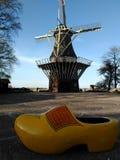 Μεγάλο παπούτσι Στοκ φωτογραφίες με δικαίωμα ελεύθερης χρήσης