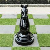 Μεγάλο σκάκι αλόγων Στοκ φωτογραφία με δικαίωμα ελεύθερης χρήσης