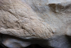 Μεγάλο σύσταση ή υπόβαθρο πετρών tracery στον τοίχο Στοκ εικόνα με δικαίωμα ελεύθερης χρήσης