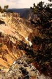 Μεγάλο φαράγγι, εθνικό πάρκο Yellowstone, Ουαϊόμινγκ, ΗΠΑ Στοκ Φωτογραφίες