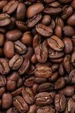 Μεγάλο arabica υπόβαθρο φασολιών καφέ Στοκ φωτογραφία με δικαίωμα ελεύθερης χρήσης