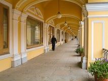 Μεγάλο Gostiny Dvor, Άγιος-Πετρούπολη, Ρωσία Στοκ φωτογραφία με δικαίωμα ελεύθερης χρήσης