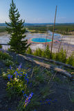 Μεγάλο Prismatic εθνικό πάρκο Yellowstone Στοκ Εικόνα
