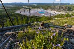 Μεγάλο Prismatic εθνικό πάρκο Yellowstone Στοκ εικόνα με δικαίωμα ελεύθερης χρήσης