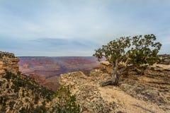 Μεγαλοπρεπές μεγάλο φαράγγι, Αριζόνα, Ηνωμένες Πολιτείες στοκ εικόνα