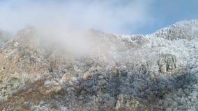 Μεγαλοπρεπής άποψη της κορυφής βουνών με τις χιονώδεις αιχμές στα σύννεφα που καλύπτονται από τα μικρούς δέντρα και τους θάμνους  απόθεμα βίντεο