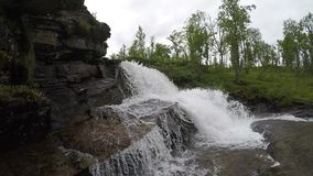 Μεγαλοπρεπής καταρράκτης βουνών γλυκού νερού στη βαθιά αγριότητα σε αργή κίνηση απόθεμα βίντεο