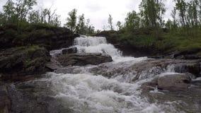 Μεγαλοπρεπής καταρράκτης βουνών γλυκού νερού στη βαθιά αγριότητα απόθεμα βίντεο