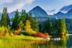 Μεγαλοπρεπής λίμνη βουνών στο εθνικό πάρκο υψηλό Tatra Pleso Strbske, Σλοβακία Στοκ Εικόνα