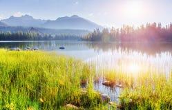 Μεγαλοπρεπής λίμνη βουνών στο εθνικό πάρκο υψηλό Tatra Pleso Strbske, Σλοβακία Στοκ Εικόνες