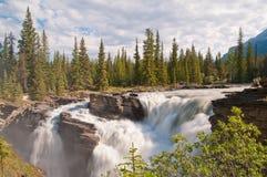 Μεγαλοπρεπείς καταρράκτες με το δάσος Στοκ εικόνες με δικαίωμα ελεύθερης χρήσης