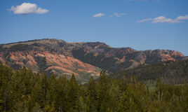 Μεγαλοπρεπείς κόκκινοι λόφοι που αγνοούν το δάσος πεύκων αγριοτήτων στοκ εικόνα