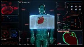 Μεγεθύνοντας μπροστινό σώμα και ανιχνευτική καρδιά Ανθρώπινο καρδιαγγειακό σύστημα στο ταμπλό ψηφιακής επίδειξης Μπλε φως ακτίνας ελεύθερη απεικόνιση δικαιώματος