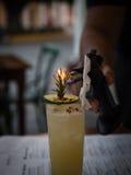 Μεθυσμένο ποτό με έναν φανό Στοκ εικόνες με δικαίωμα ελεύθερης χρήσης
