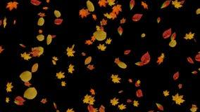 Μειωμένα υπόβαθρα φύλλων φθινοπώρου διανυσματική απεικόνιση