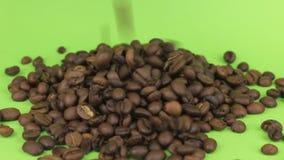 Μειωμένα φασόλια του καφέ σε έναν σωρό των φασολιών καφέ σε μια πράσινη οθόνη απόθεμα βίντεο
