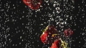 Μειωμένα φρέσκα φράουλες και κεράσια που καταβρέχουν στο λαμπιρίζοντας νερό στο μαύρο υπόβαθρο o Βίντεο με απόθεμα βίντεο