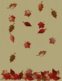 μειωμένα φύλλα Στοκ φωτογραφία με δικαίωμα ελεύθερης χρήσης