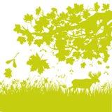 Μειωμένα φύλλα στο δάσος φθινοπώρου Στοκ εικόνα με δικαίωμα ελεύθερης χρήσης