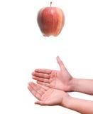 μειωμένα χέρια μήλων Στοκ φωτογραφία με δικαίωμα ελεύθερης χρήσης