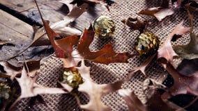 Μειωμένο χιόνι με τα φύλλα Χριστουγέννων απόθεμα βίντεο