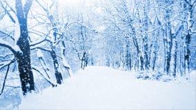 μειωμένο χιόνι απόθεμα βίντεο