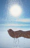 μειωμένο ύδωρ χεριών Στοκ φωτογραφία με δικαίωμα ελεύθερης χρήσης