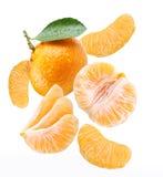 μειωμένο tangerine φετών στοκ εικόνα