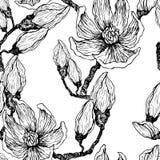 Μελάνι, μολύβι, τα φύλλα και τα λουλούδια Magnolia Άνευ ραφής υπόβαθρο σχεδίων Συρμένη χέρι ζωγραφική φύσης ελεύθερος απεικόνιση αποθεμάτων