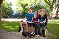μελέτη σπουδαστών ομάδας Στοκ Εικόνες