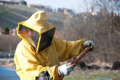 Μελισσοκόμος με τις μέλισσές του Στοκ εικόνα με δικαίωμα ελεύθερης χρήσης