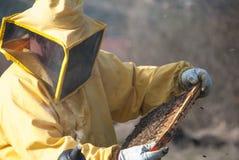 Μελισσοκόμος με τις μέλισσές του Στοκ Φωτογραφίες
