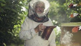 Μελισσοκόμος με το βράσιμο στον ατμό του καπνιστή μελισσών στο μέλισσα-κήπο απόθεμα βίντεο
